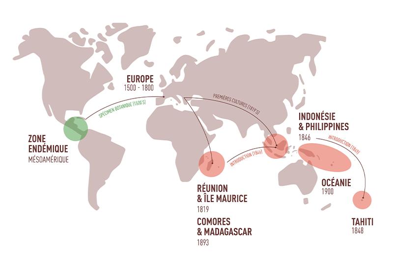 carte histoire de la vanille