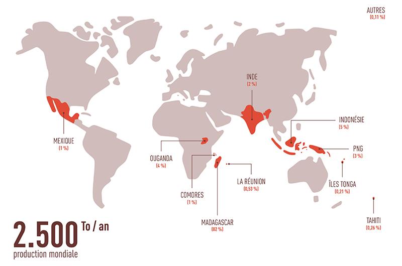 infographie chiffre mondiaux production de vanille