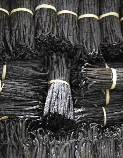 vanille noire qualite gourmet